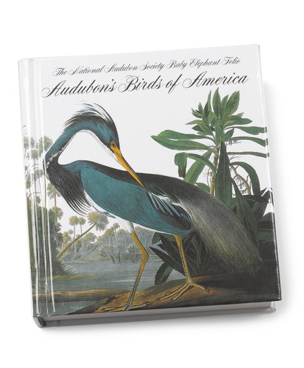 Audubon's Birds of America Mini Book