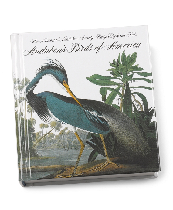 Audubon's Birds of America Mini Book As Shown