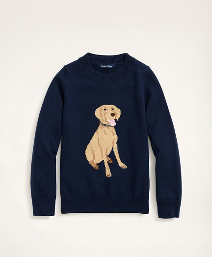 Boys Merino Wool Dog Intarsia Sweater
