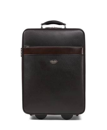 Small Leather Trolley